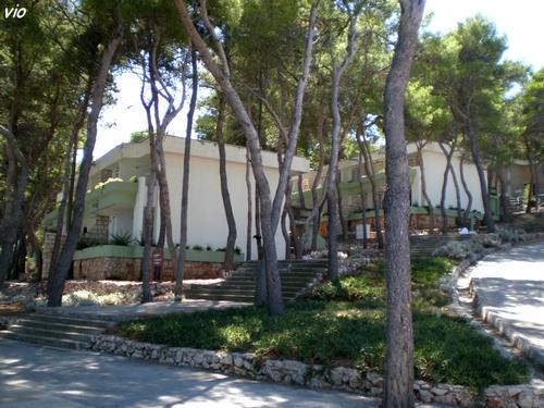 Les appartements dans une magnifique pinède à flanc de colline
