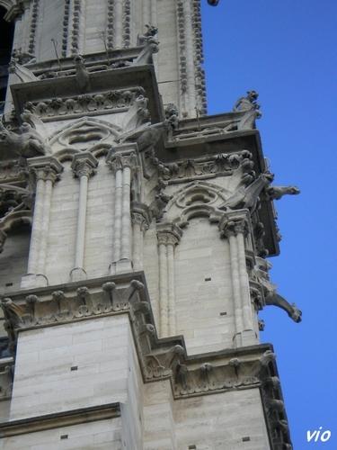 Les gargouilles de Notre Dame de Paris