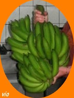 Régime de bananes !