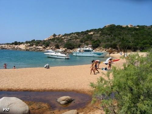 Calanque de Tivella - paradis des Tortues  (Corse du Sud)