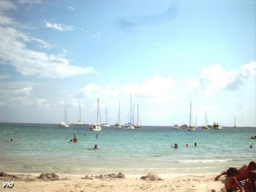 Très jolie plage de Rocapina (Corse du Sud)