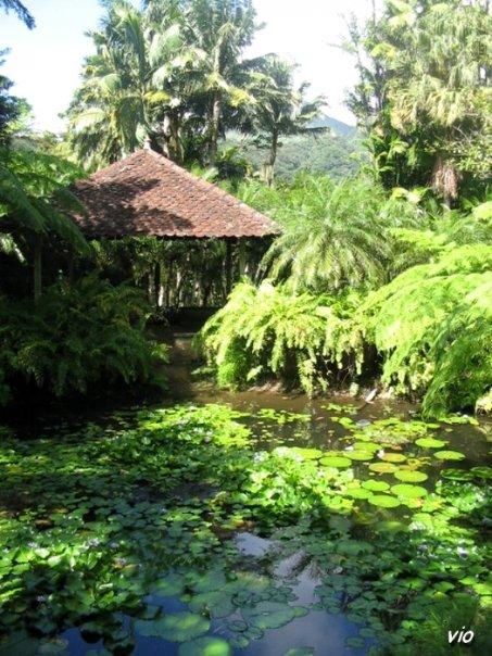 Jardins de Balata