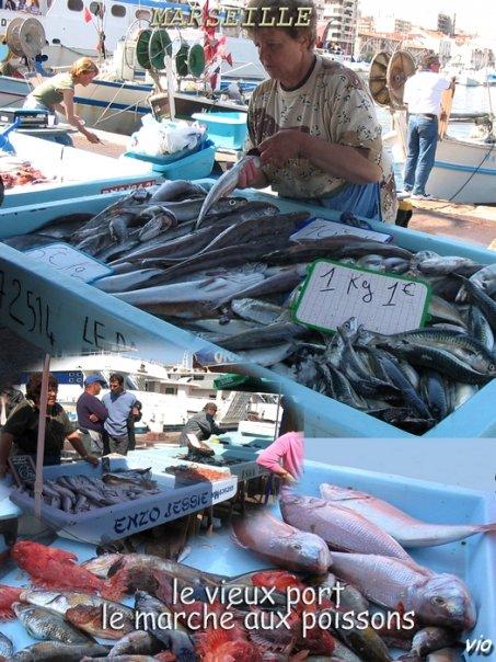 Retour de pêche à Marseille - Vente à la criée sur le vieux port