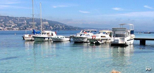 Les eaux chaudes et crystalline de l'ile Sainte Marguerite (Ile de Lérins, au large de Cannes)