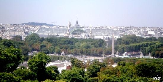 Le Grand Palais, vu de la grande roue du Jardin des Tuileries