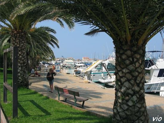 La promenade le long du port de Propriano