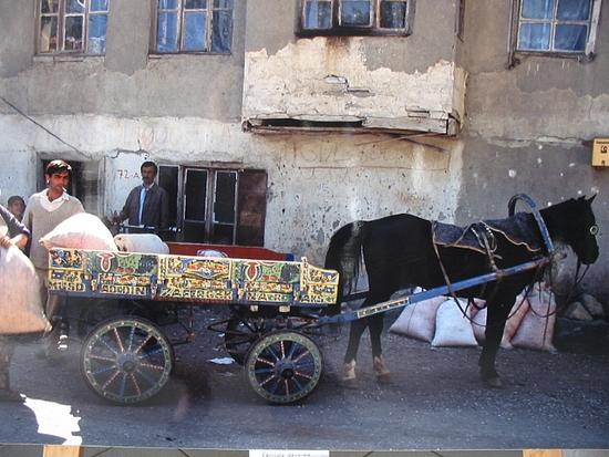 Photo : A. Thévenard/ ramassage des sacs de pétales de roses