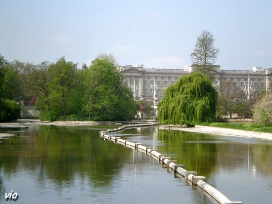 Buckingham palace st jame s park rue du s jour pour for Le jardin de catherien