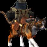 L'assurance animaux: Voyager avec son chien ou son chat