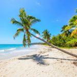 Quelle est la meilleure saison pour partir en Martinique ?